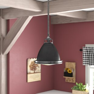Laurel Foundry Modern Farmhouse Helenie 1-Light Cone Pendant