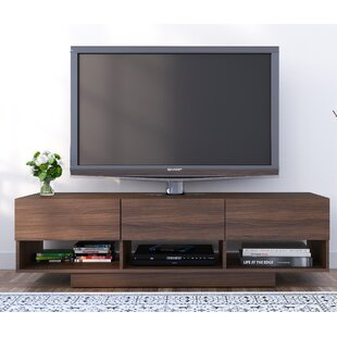 Clearance Eridanus TV Stand for TVs up to 66 By Brayden Studio