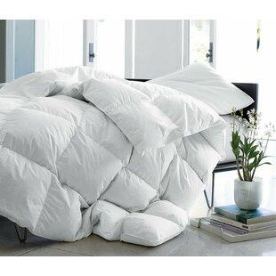 Heavyweight Down Comforter by Alwyn Home