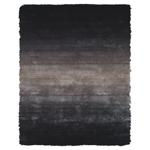 Purchase Sapienza Black Area Rug By Wrought Studio