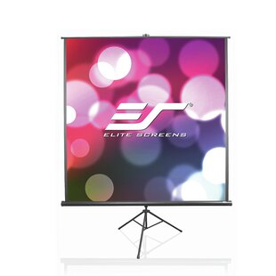 B Series White 136 inch  Portable Projection Screen
