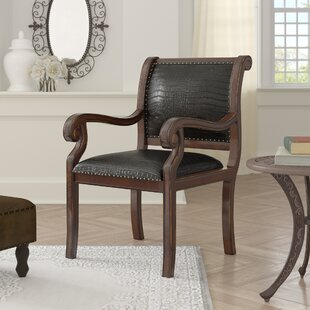 Rowen Armchair by Astoria Grand