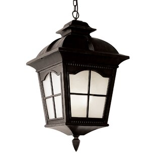 Best Reviews Freeborn 4-Light Outdoor Hanging Lantern By Darby Home Co