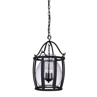 Darby Home Co Eliza 3-Light Lantern Pendant