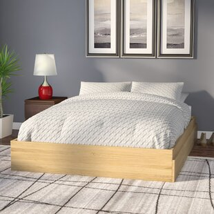 Best Reviews Rancourt Storage Platform Bed by Turn on the Brights Reviews (2019) & Buyer's Guide