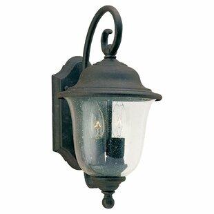 Fleur De Lis Living Elizabeth 2-Light Outdoor Wall Lantern