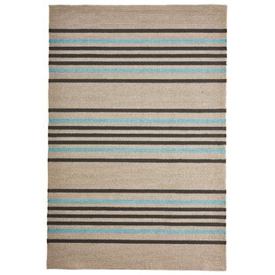 Enoch Stripe Hand-Woven Indoor/Outdoor Area Rug