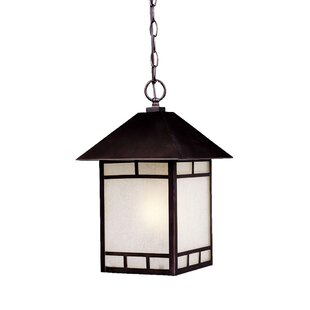 San Pablo 1-Light Outdoor Hanging Lantern