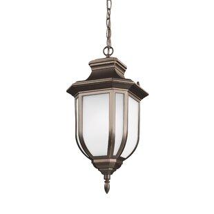 Clearance Teri 1-Light Outdoor Hanging Lantern By Fleur De Lis Living