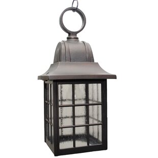 Best Price Archard 1-Light Outdoor Hanging Lantern By Darby Home Co