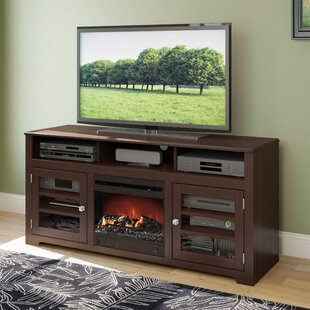 Robbin TV Stand For TVs Up To 65 Inches With Electric Fireplace Included By Ivy Bronx
