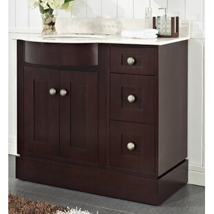 Kester Transitional 48 Wood Single Bathroom Vanity Set by Darby Home Co