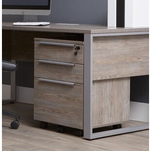 Ebern Designs Afton 3-Drawer Mobile Verti..