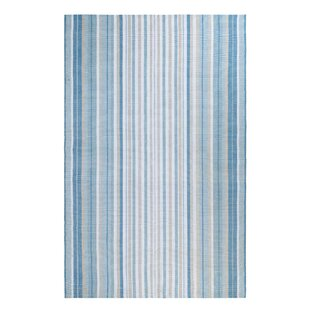 Cirrus Stripe Hand-Woven Blue Indoor/Outdoor Area Rug
