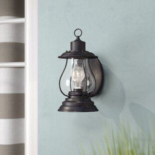 Carina 1-Light Outdoor Wall Lantern by Beachcrest Home