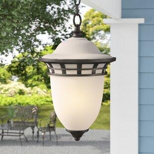 Fleur De Lis Living Towry 1-Light Contemporary Outdoor Pendant