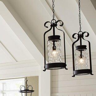 Red Barrel Studio Vanfleet 1-Light Outdoor Hanging Lantern