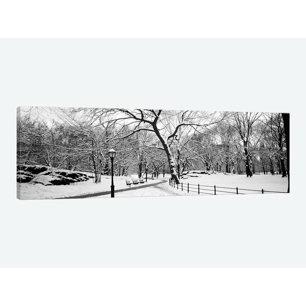 Affinity At Winter Park Home: East Urban Home 'Bare Trees During Winter In A Park