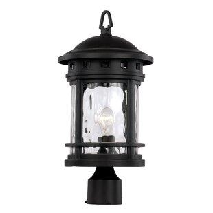 Ashberry 1-Light Lantern Head by Loon Peak
