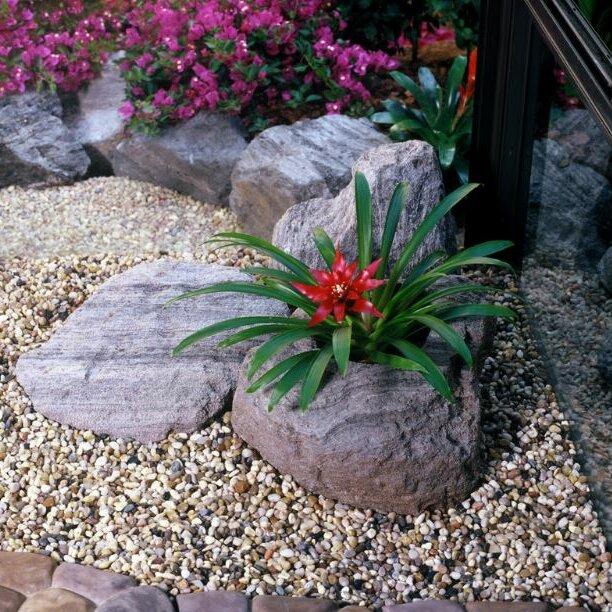 Featherockinc Sierra Artisan Pumice Pot Planter Wayfair