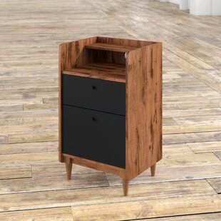 Posner 2-Drawer Vertical Filing Cabinet by Mercury Row