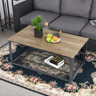 Throop Big Coffee Table with Storage