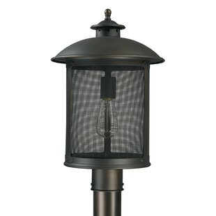 Gracie Oaks Calvin Outdoor 1-Light Lantern Head