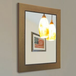 Darby Home Co Doylestown Wall Mirror