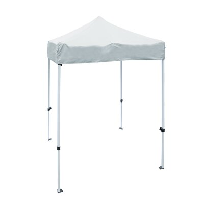 5 Ft. W x 5 Ft. D Steel Pop-Up Canopy ALEKO Color: White