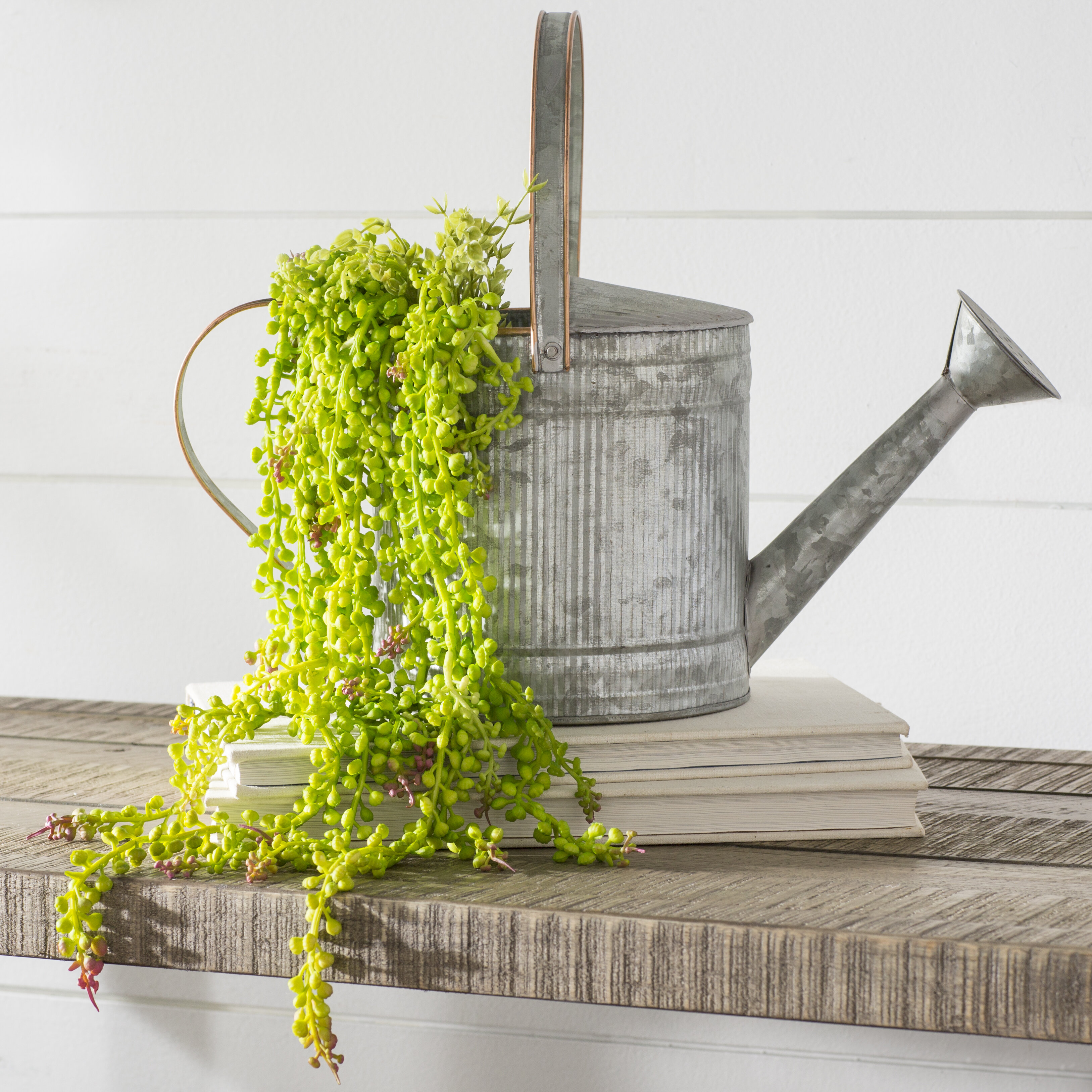 Laurel Foundry Modern Farmhouse Artificial String of Pearls Foliage on succulents string of pearls, golf string of pearls, flower string of pearls,