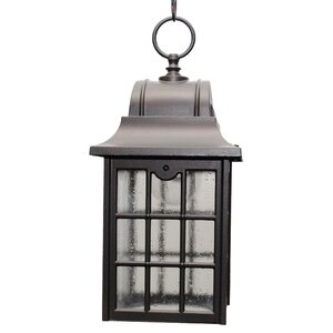 600 Series 1-Light Outdoor Hanging Lantern