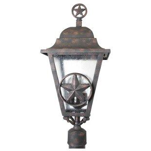 Alcott Hill Penfield Lone Star Series 3-Light Lantern Head