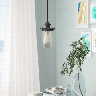Beachcrest Home Narvaez 1-Light Jar Pendant