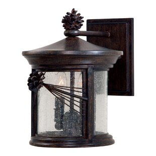 Great Outdoors by Minka Abbey Lane 2-Light Outdoor Wall Lantern