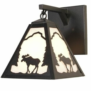 Steel Partners Timber Ridge 1-Light Outdoor Wall Lantern