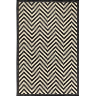 Hughes Black/Beige Indoor/Outdoor Area Rug