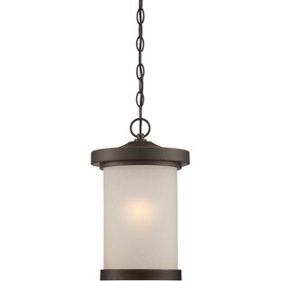 Price comparison Thorpe 1-Light Outdoor Pendant By Alcott Hill