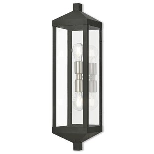 Top Demery 2-Light Outdoor Flush Mount By Mercury Row