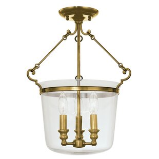 Darby Home Co Edington 3-Light Urn Pendant