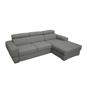 Braintree Sleeper Sectional by Latitude Run