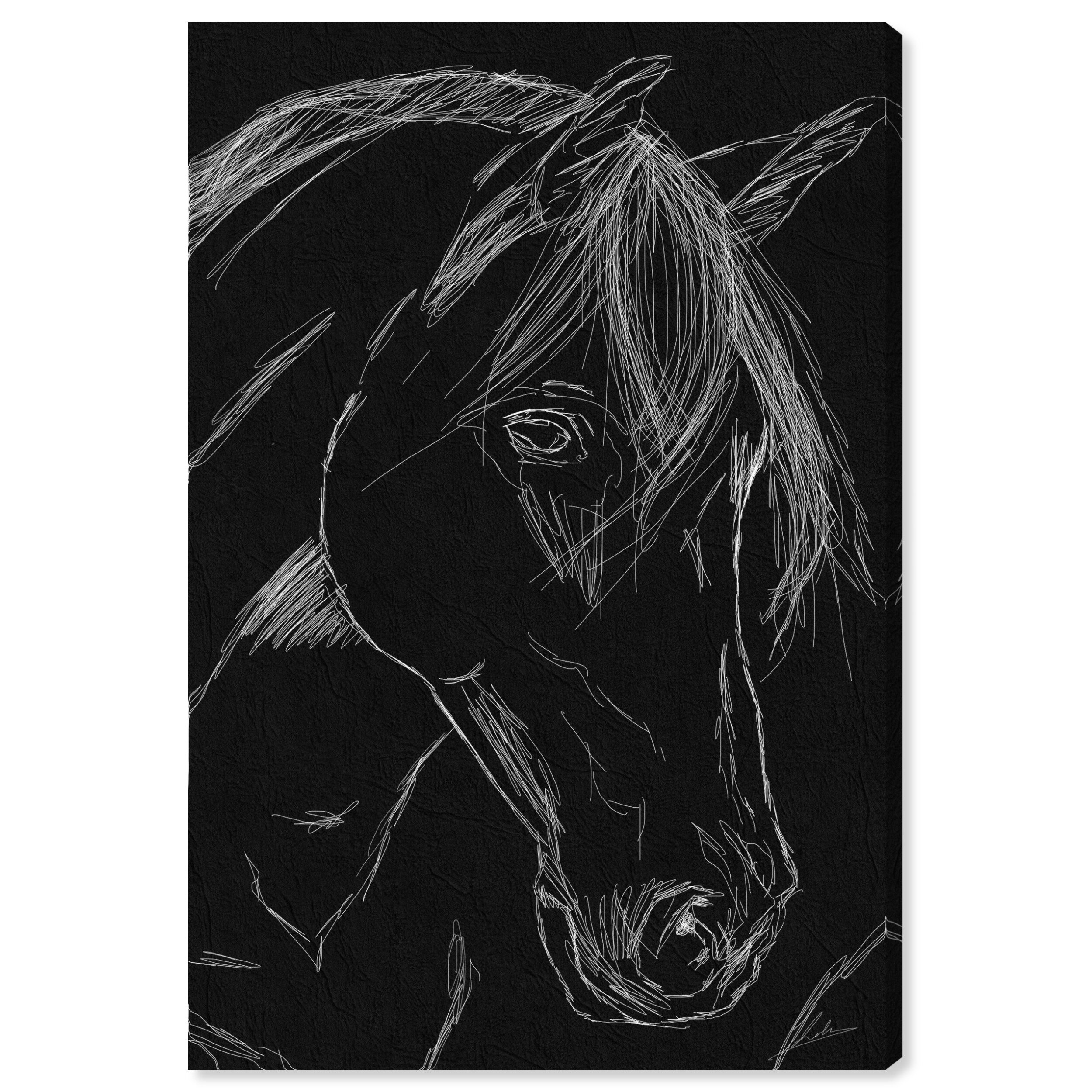 Ophelia Co Horse Sketch Black Drawing Print On Canvas