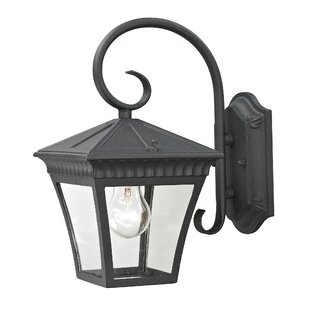 Berrywood 1-Light Outdoor Wall Lantern by Astoria Grand