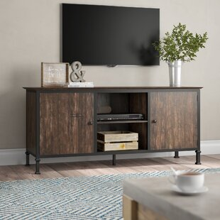 Best Berinda Transitional TV Stand for TVs up to 60 by Gracie Oaks Reviews (2019) & Buyer's Guide