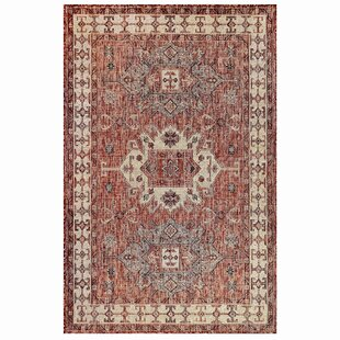 Arverne Red Indoor/Outdoor Area Rug