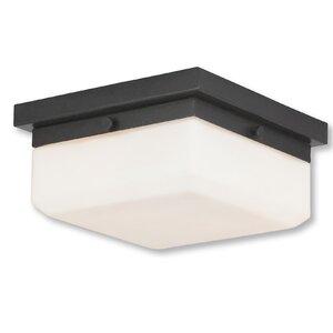 Cara 2-Light Flush Mount