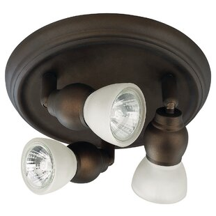 Dormont 3-Light Directional & Spotlight (Set of 2) by Wrought Studio