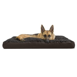 cd1aa772cea7 Extra Large Dog Beds You'll Love | Wayfair