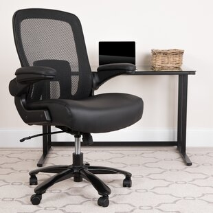 Pyron Ergonomic Mesh Task Chair