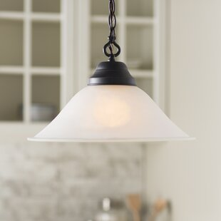 Fleur De Lis Living Whitbeck 1-Light Cone..