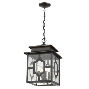 Brackin 4-Light Outdoor Hanging Lantern by Darby Home Co